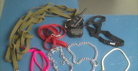 Dog Training Tools